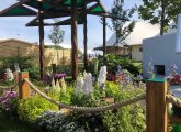 Timotay Landscapes Shortlisted to Compete in this Year's APL Avenue Show Garden Competition at BBC Gardeners' World Live