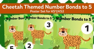 Number Bonds To 5 Cheetah Posters For KS1
